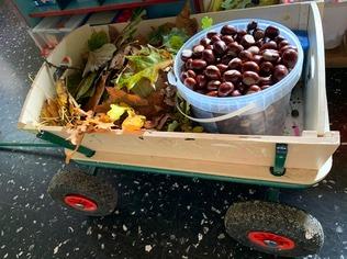 L'automne en maternelle!